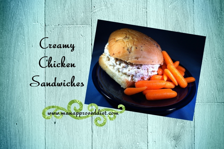 Creamy Chicken Sandwiches-001